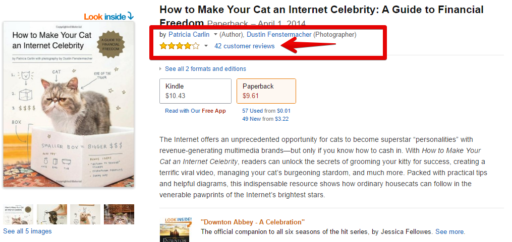 Amazon.com_ How to Make Your Cat an Internet Celebrity