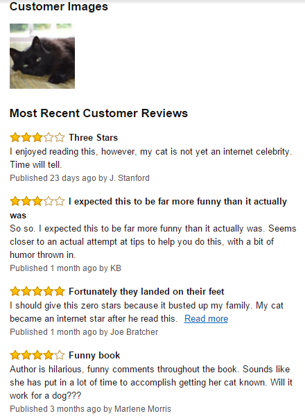 Amazon.com_ How to Make Your Cat an Internet Celebrity_ A