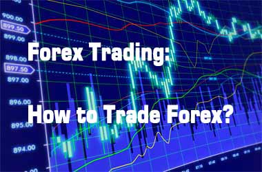 Real forex trading without investment