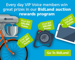 Is VIP Voice A Scam